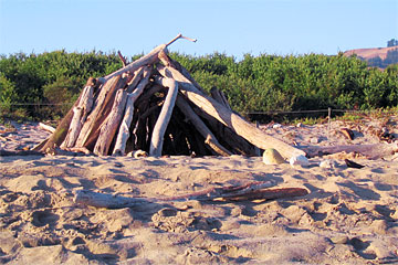 Crude wooden hut on Andrew Molera State Park beach