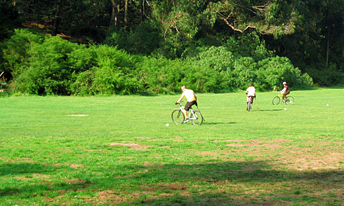 People playing Bicycle Polo in field