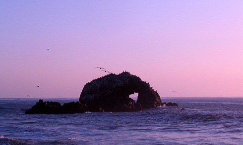 Seal Rocks formation with Heart shape