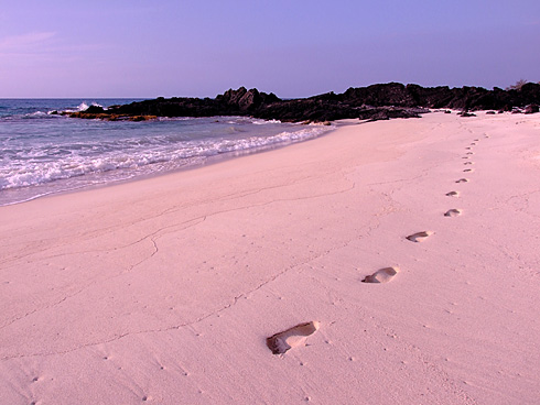 A childs footsteps on Makalawena Beach