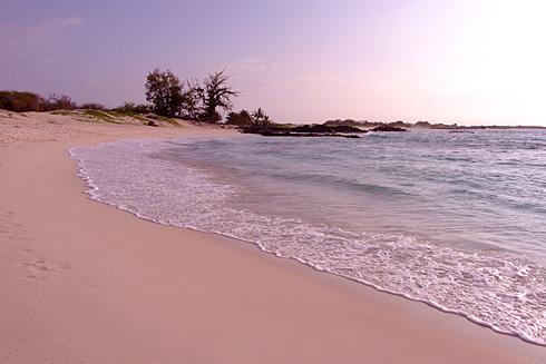 Pristine Makalawena Beach