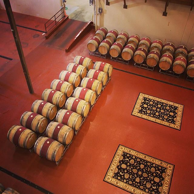Wine barrels at Sterling Winery with two fancy rugs nearby
