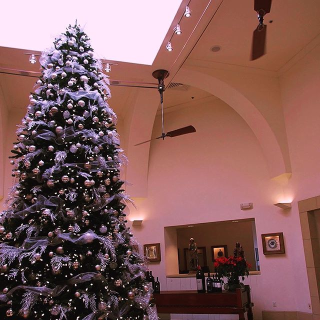 Sterling Winery's magnificent Christmas Tree