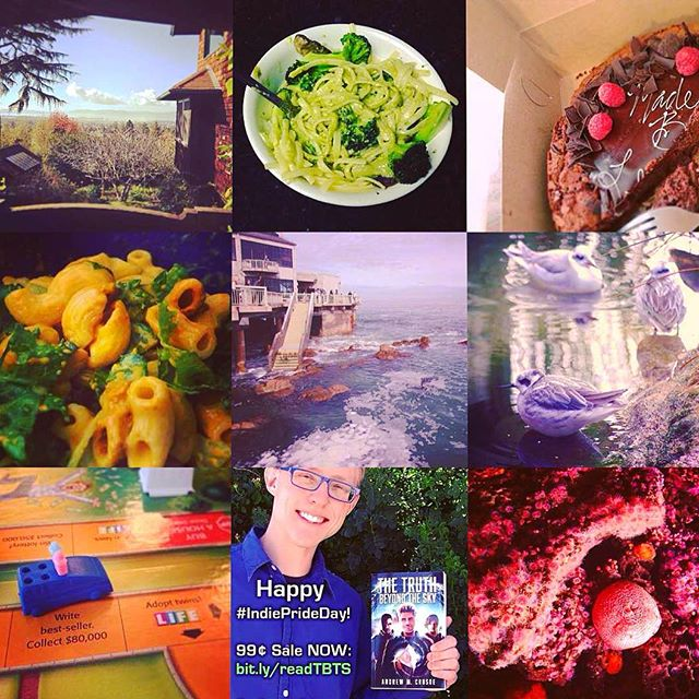 2016 Best Nine - Best sellers, berkeley, and birds