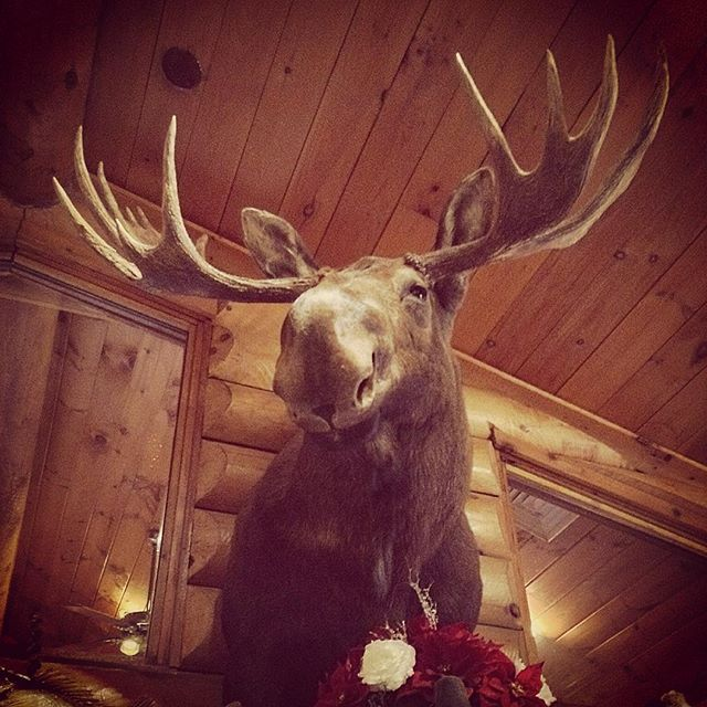 Moosehead in Wisconsin restaurant