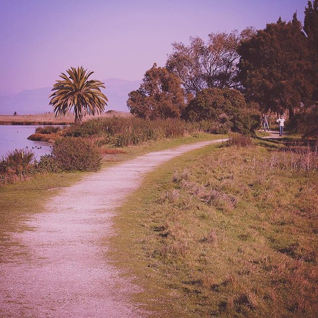Palo Alto Baylands Nature Preserve path
