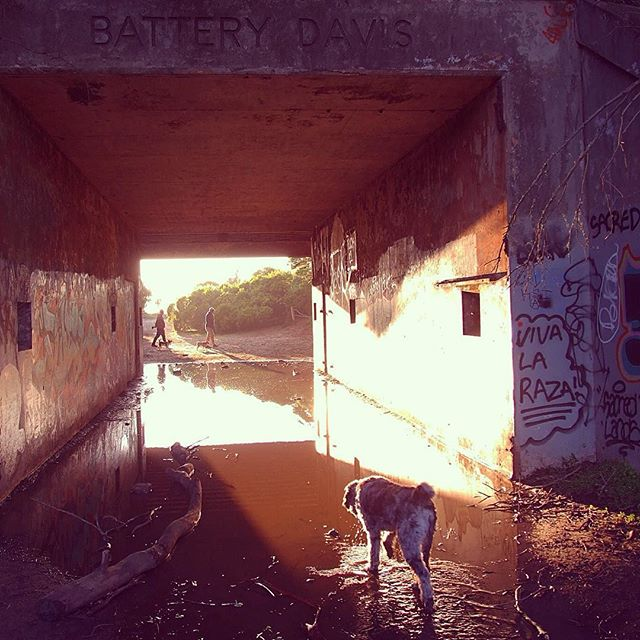 Battery Davis tunnel catching the sunset at Fort Funston
