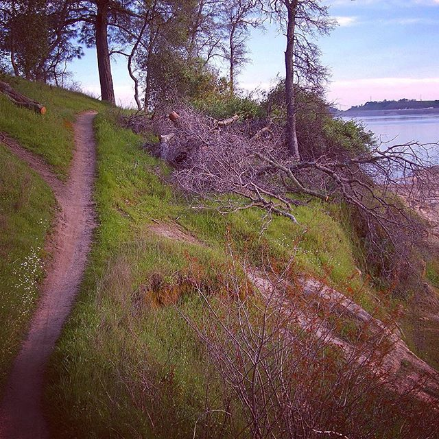 Strange Trails of Folsom Lake