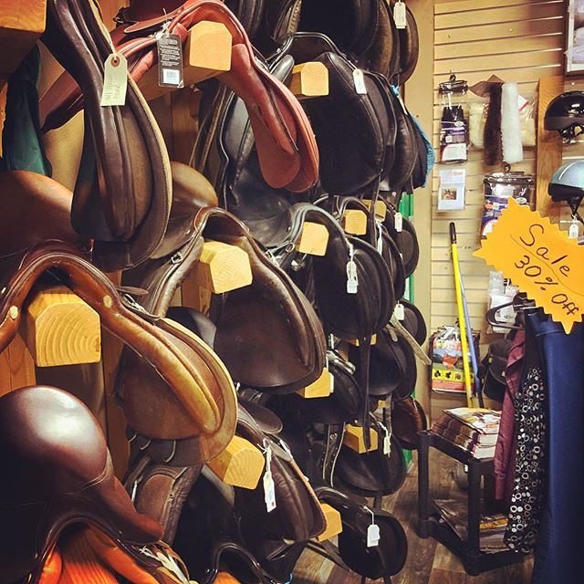 ALL the Great Saddles - 1st time in a equine supply store