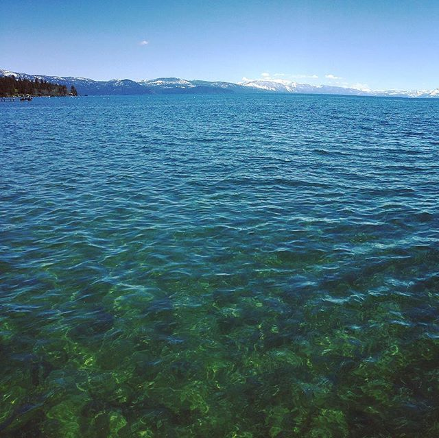 Lake Tahoe is surprisingly green - view from Kings Beach