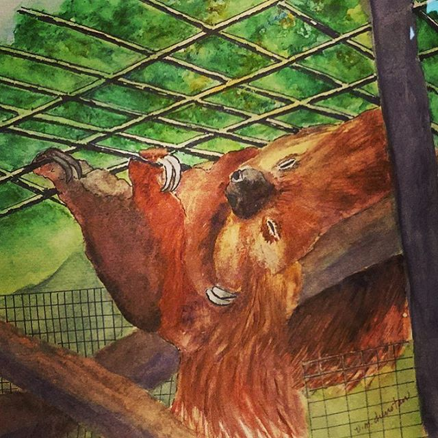 Relaxing Sloth Watercolor Painting by Virginia Dunstan