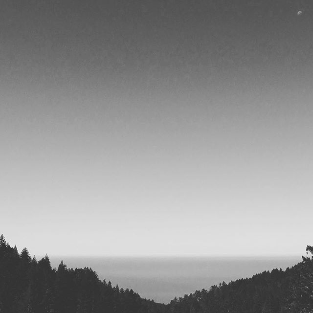 Hiking in Mt. Tamalpais State Park, moon over the sea