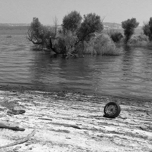 Folsom Lake! Population: Tire