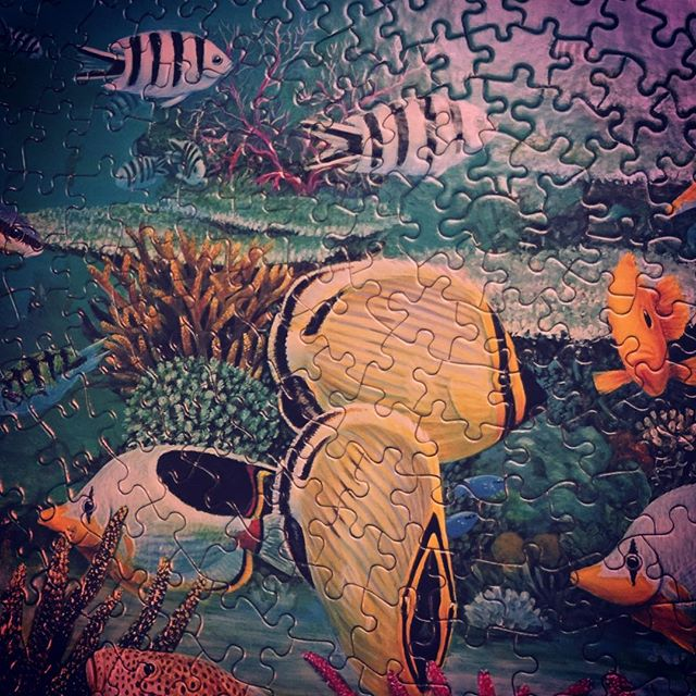 Solving a Coral Reef fish puzzle