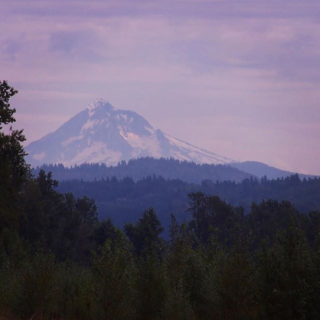 Mount Hood looking majestic from Sandy River Delta Park