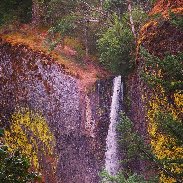 Latourell Falls along Columbia River Gorge in Oregon