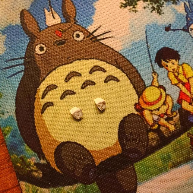 Totoro Coaster has breasts made of 2 bits of a sleeping pill