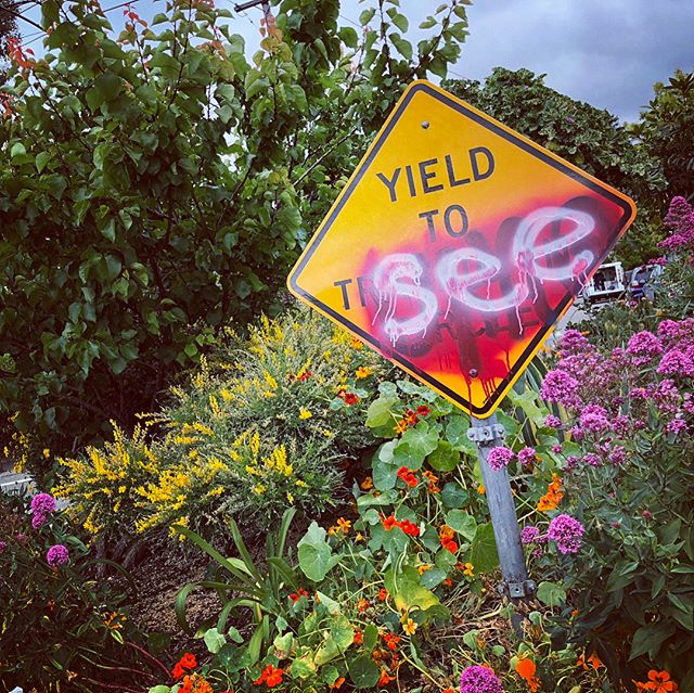 Berkeley YIELD TO SEE creative graffiti on Yield Sign