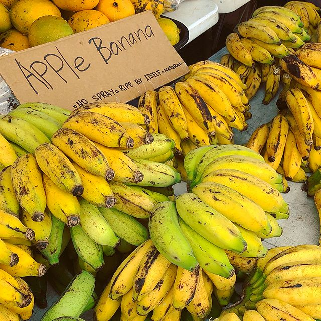 Apple Bananas at Makuu Farmers Market, Big Island, Hawaii