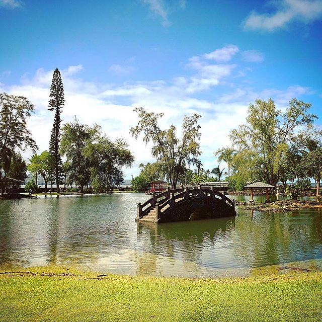 A View of Lili'uokalani Park and Gardens flooded