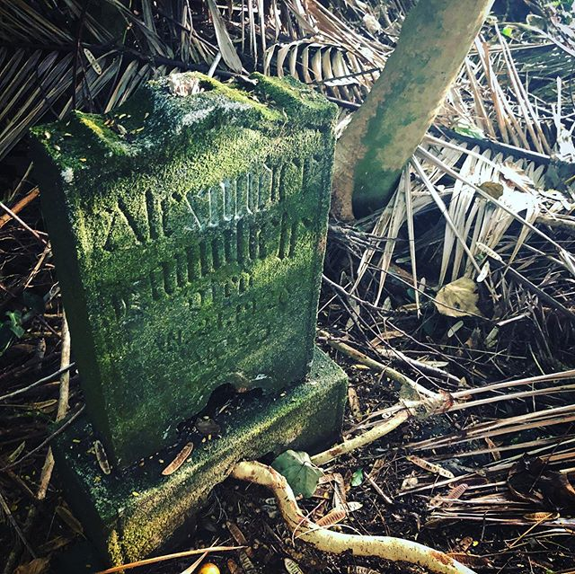 Hidden Gravestone in Puna