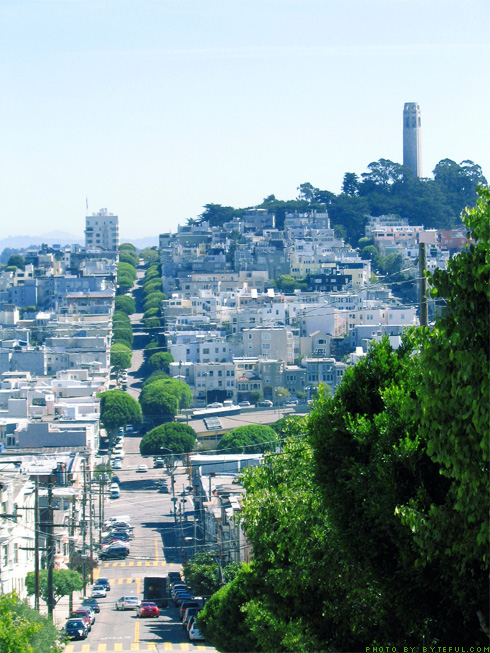 Coit Tower in Skyline from Lombard Street
