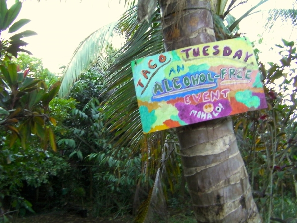 Taco Tuesday Cinderland sign