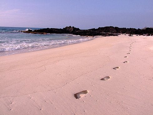 Footprints in Makalawena beach