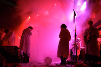 Polyphonic Spree in a Violet Haze